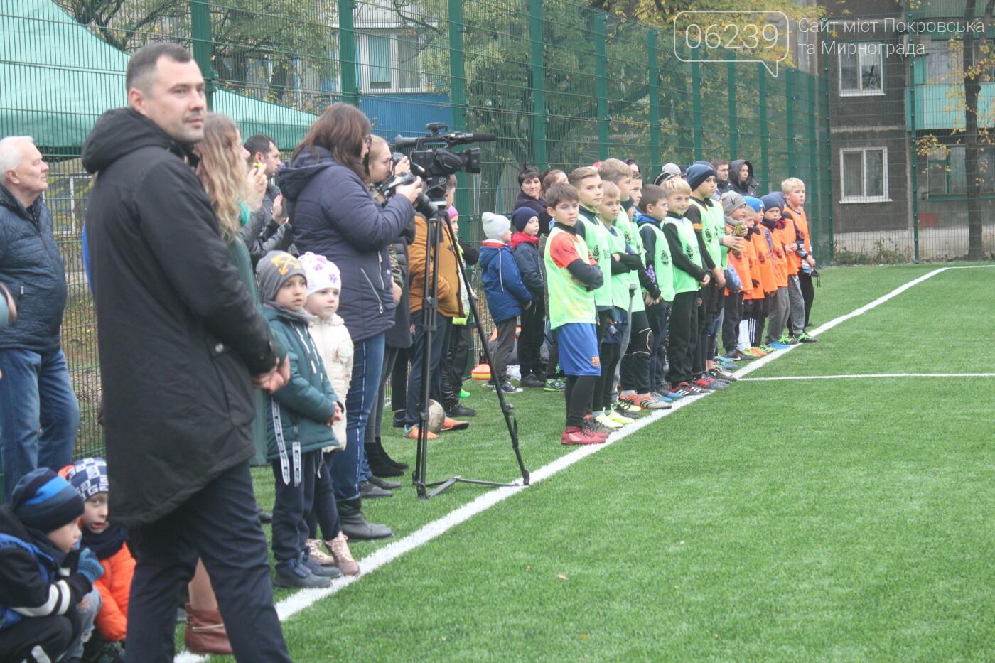 В Мирнограде открыли еще одно футбольное поле с искусственным покрытием, фото-1