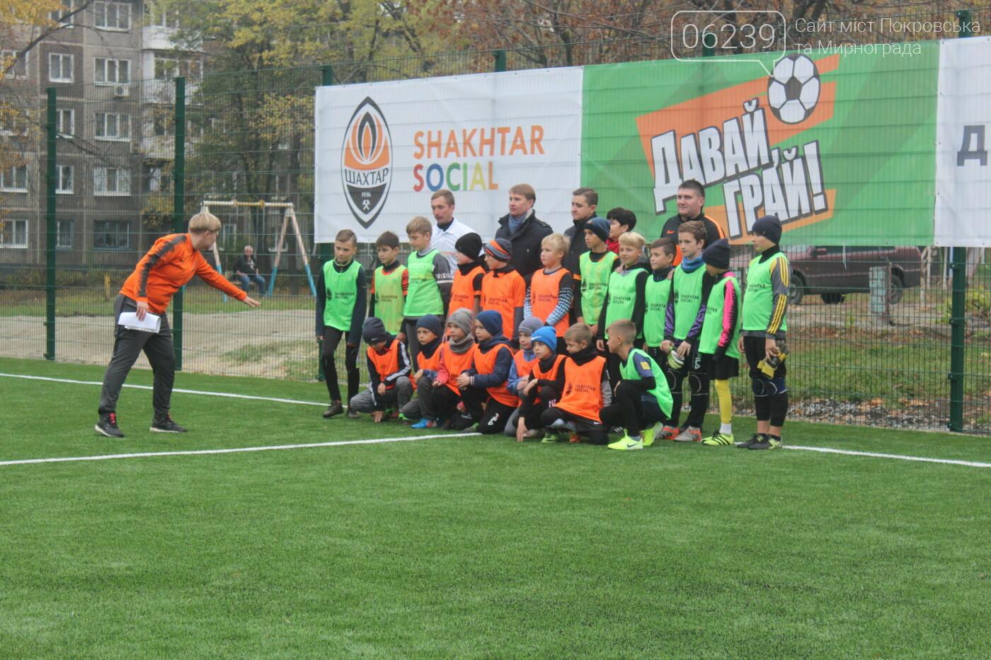 В Мирнограде открыли еще одно футбольное поле с искусственным покрытием, фото-5
