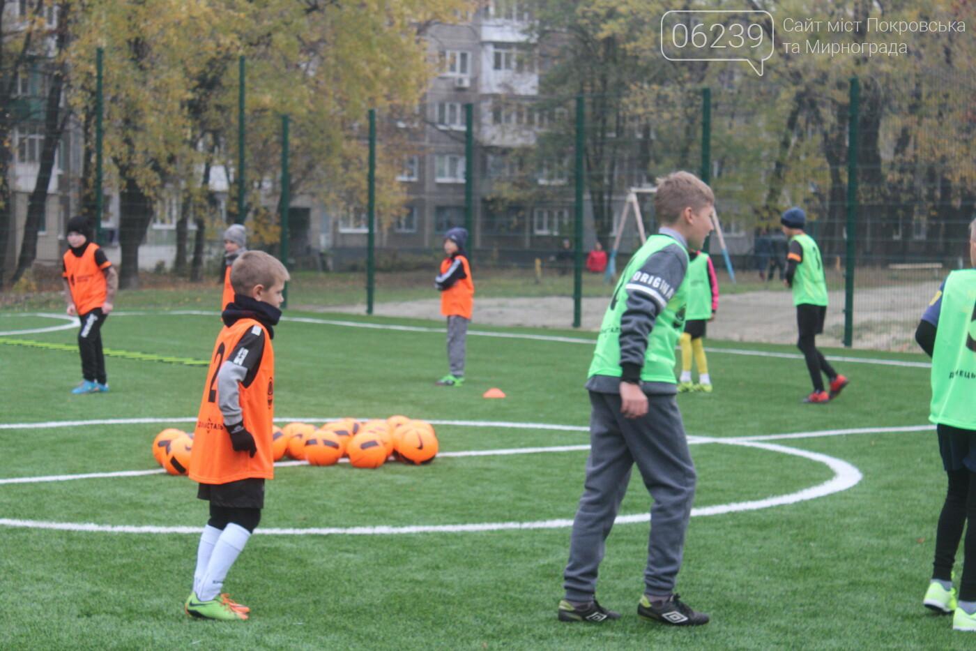 В Мирнограде открыли еще одно футбольное поле с искусственным покрытием, фото-8