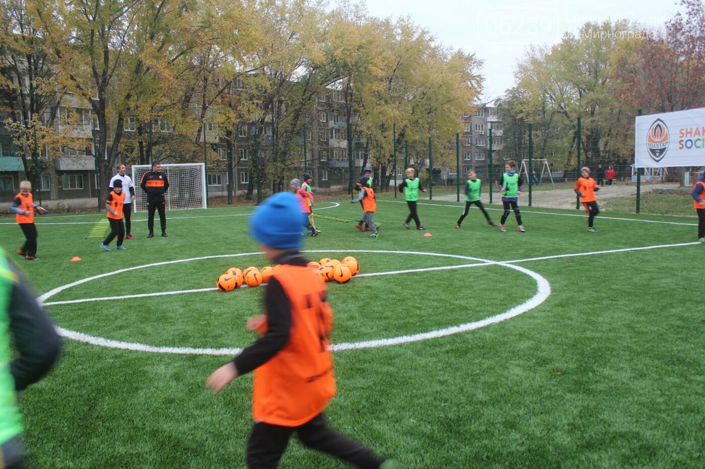 В Мирнограде открыли еще одно футбольное поле с искусственным покрытием, фото-9