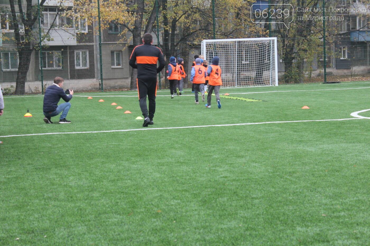 В Мирнограде открыли еще одно футбольное поле с искусственным покрытием, фото-10