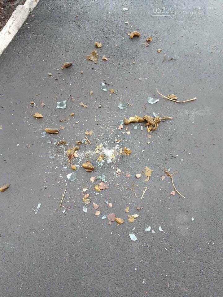 Жильцы многоквартирного дома в Покровске выбрасывают мусор прямо с балкона, фото-2