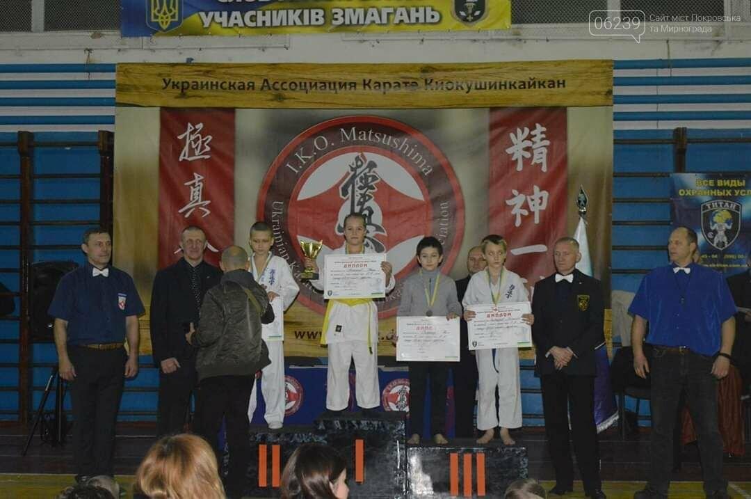 Покровские каратэки на выходных сражались на чемпионате Matsushima Cup и на открытом кубке Донетчины филиала УККА, фото-3