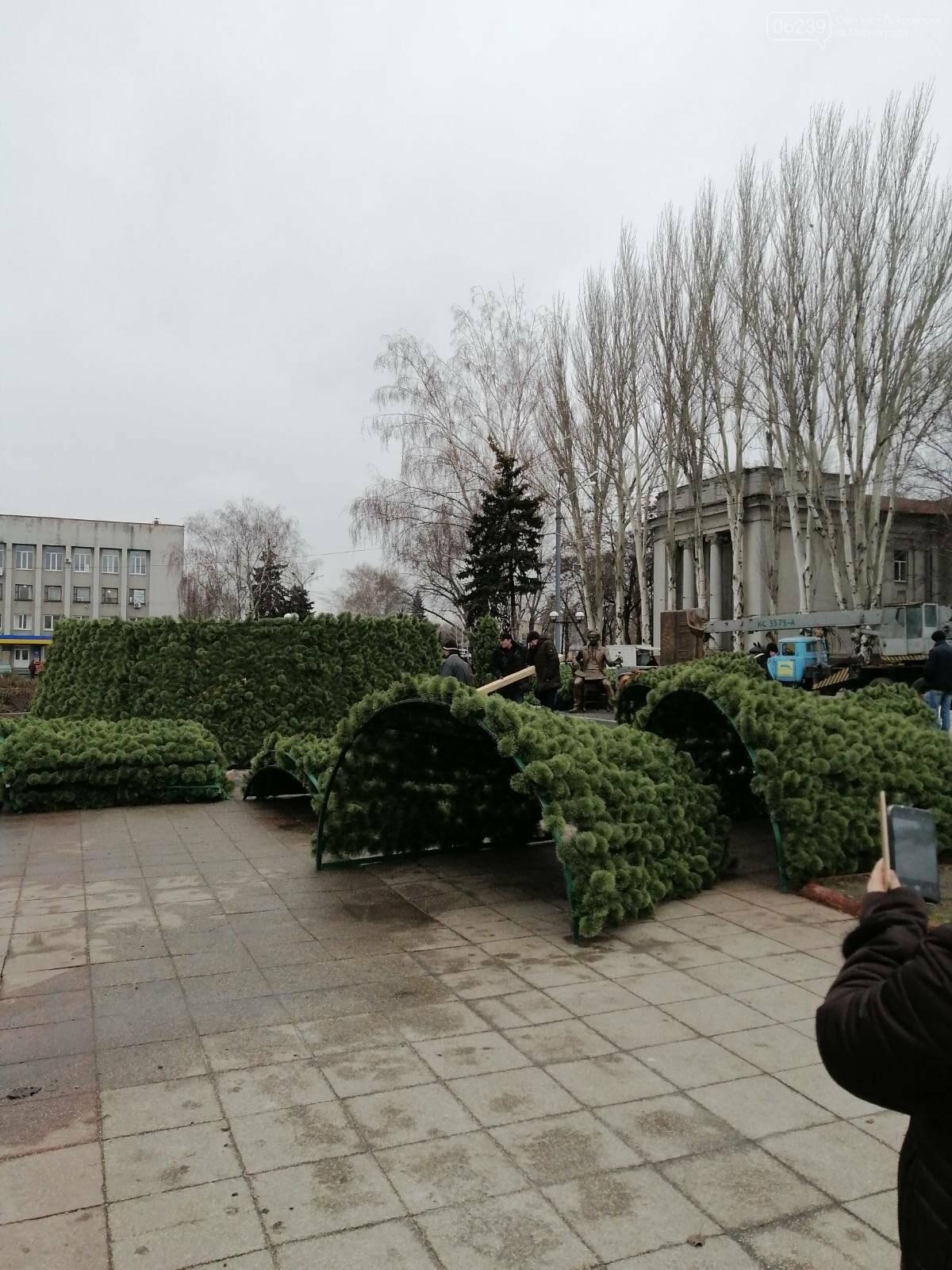 В Покровске начался монтаж главной елки города, фото-13
