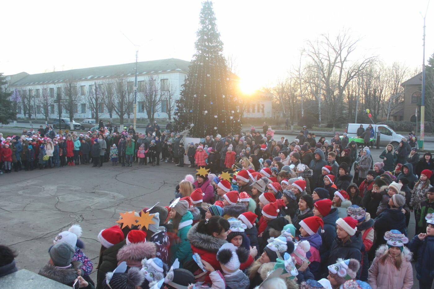 В Мирнограде торжественно открыли главную городскую ёлку, фото-2