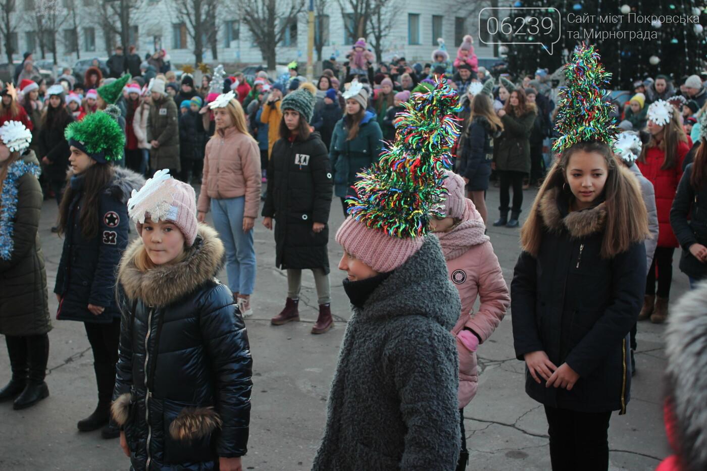 В Мирнограде торжественно открыли главную городскую ёлку, фото-10