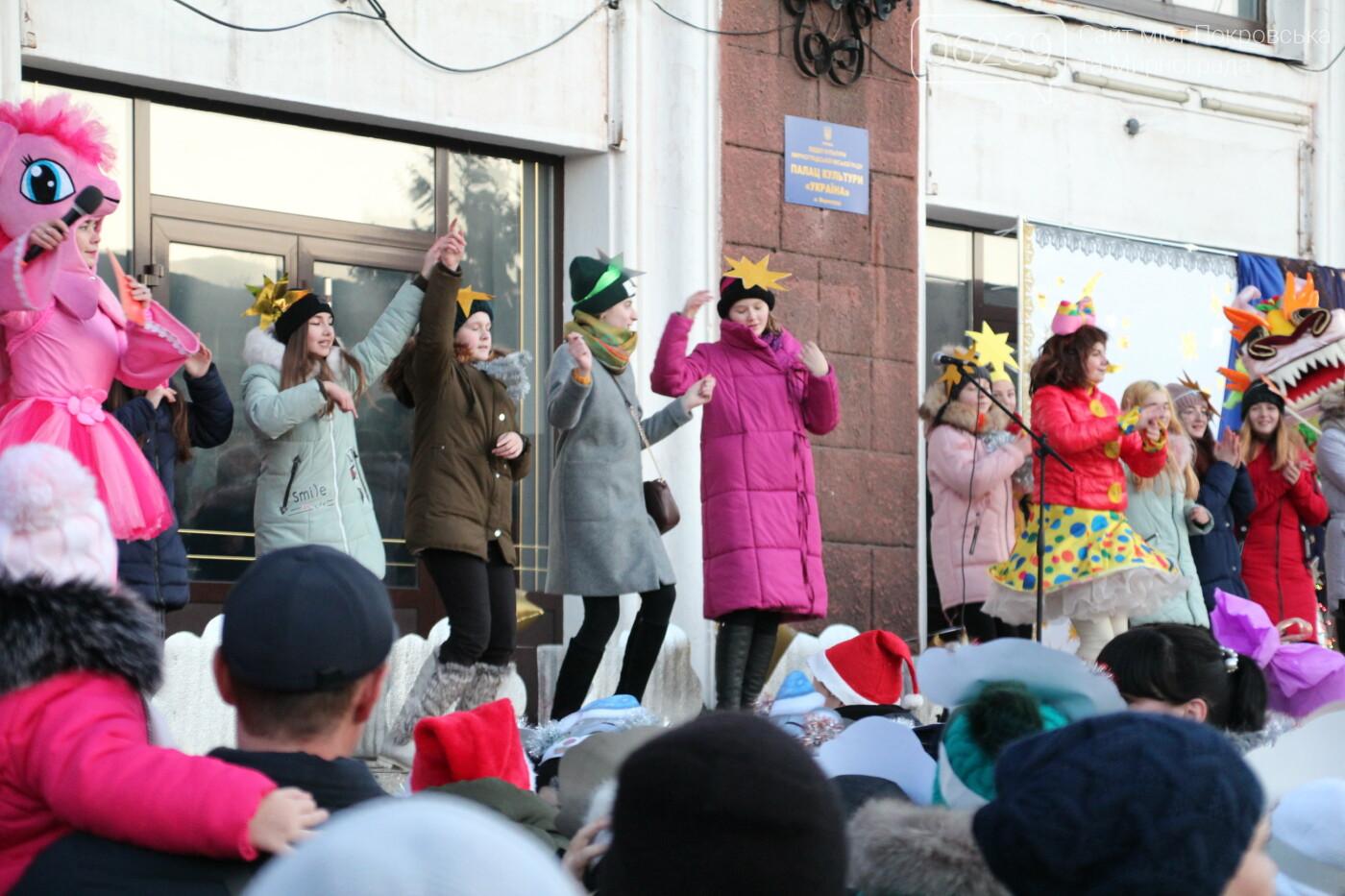 В Мирнограде торжественно открыли главную городскую ёлку, фото-5