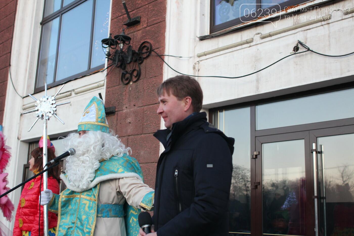 В Мирнограде торжественно открыли главную городскую ёлку, фото-8