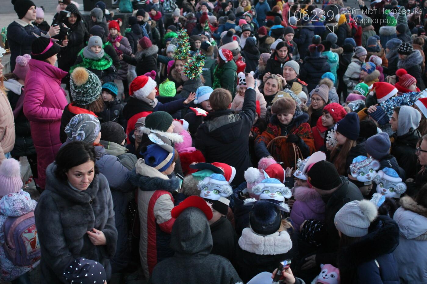 В Мирнограде торжественно открыли главную городскую ёлку, фото-9