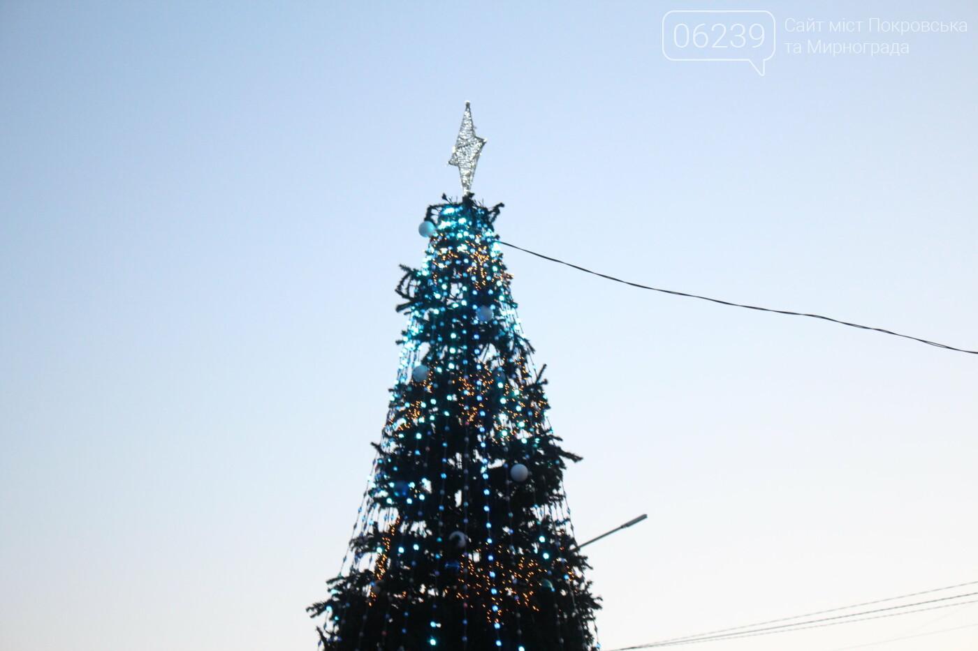 В Мирнограде торжественно открыли главную городскую ёлку, фото-11