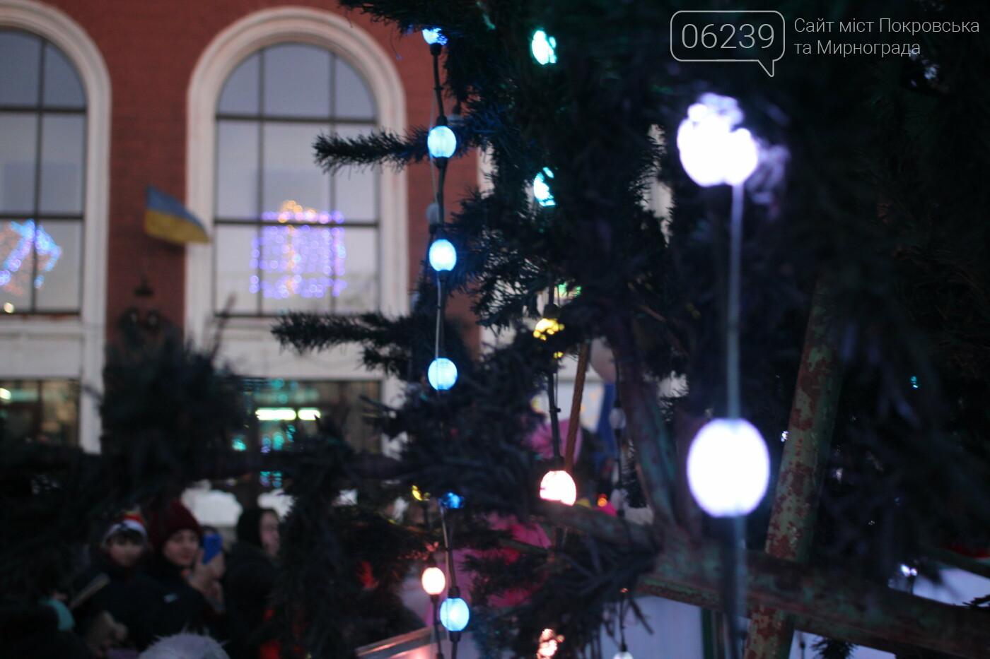 В какую сумму Мирнограду обошлась новогодняя ёлка?, фото-3