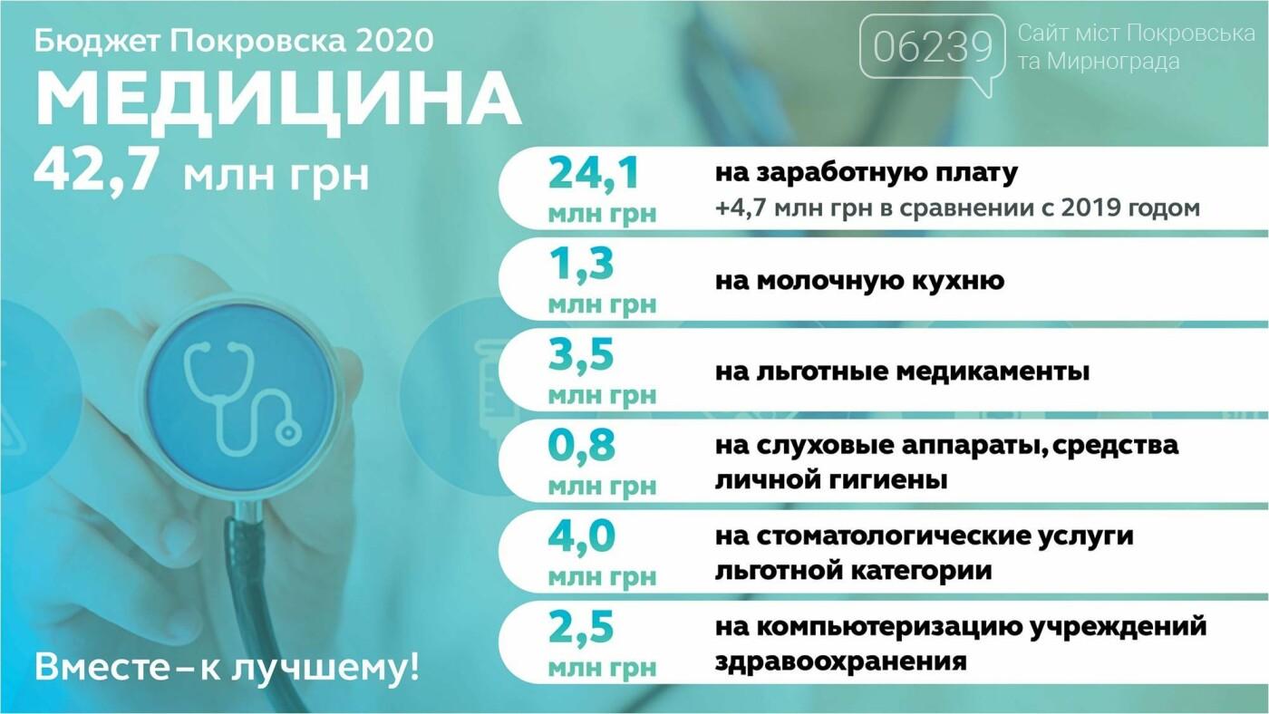 В Покровске утвердили бюджет-2020: решили меньше тратить на праздники и пиар, фото-3
