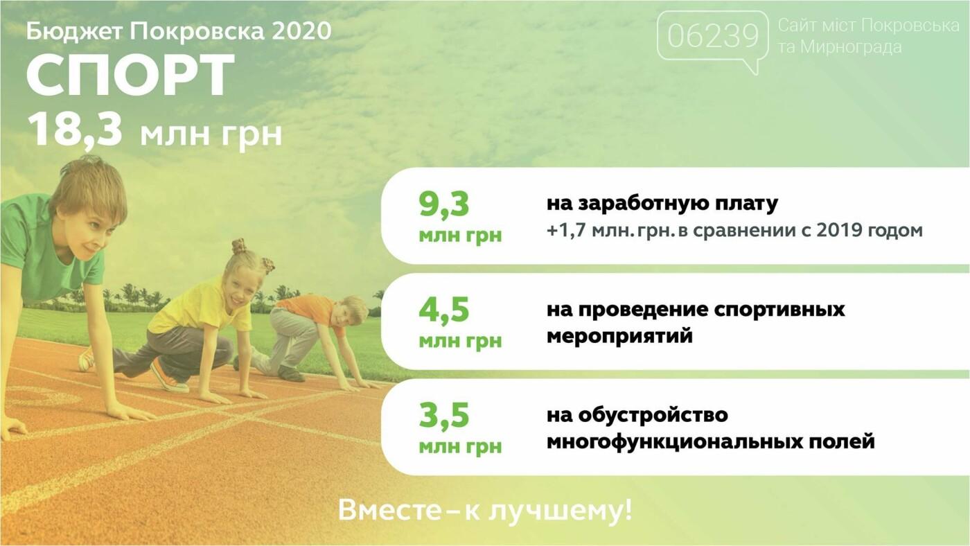 В Покровске утвердили бюджет-2020: решили меньше тратить на праздники и пиар, фото-5