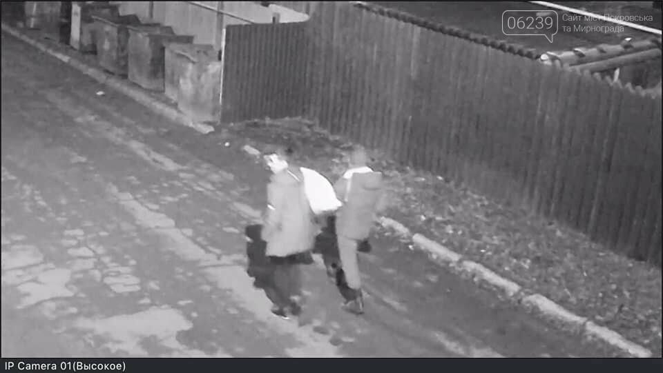 В Родинском установлены похитители украшений с новогодней ёлки, фото-1