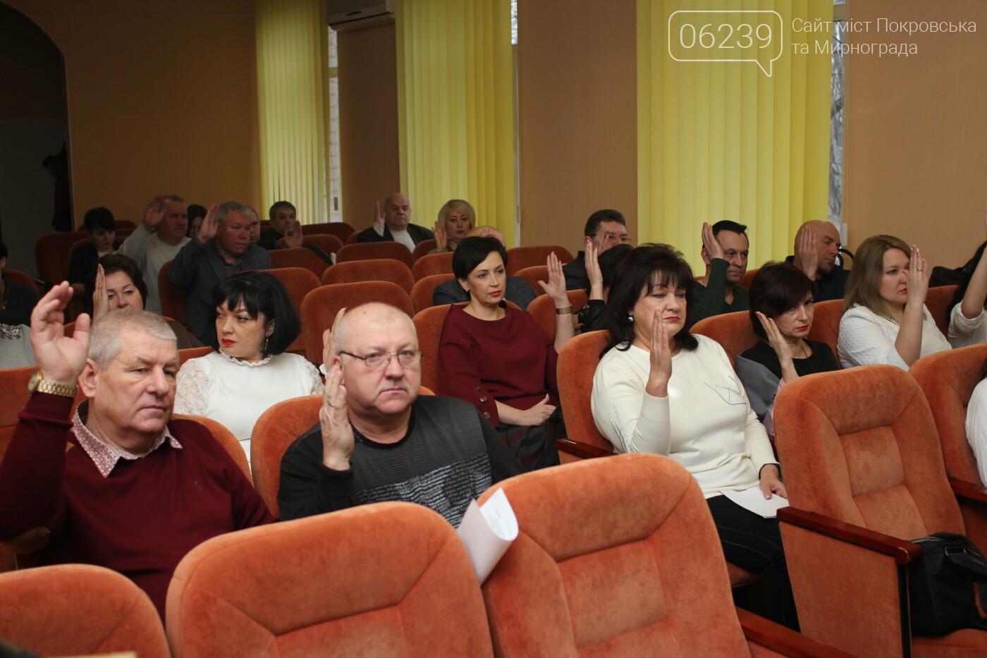 Изменения в бюджете и новый начальник отдела здравоохранения: в Мирнограде состоялась 72-я сессия горсовета, фото-3