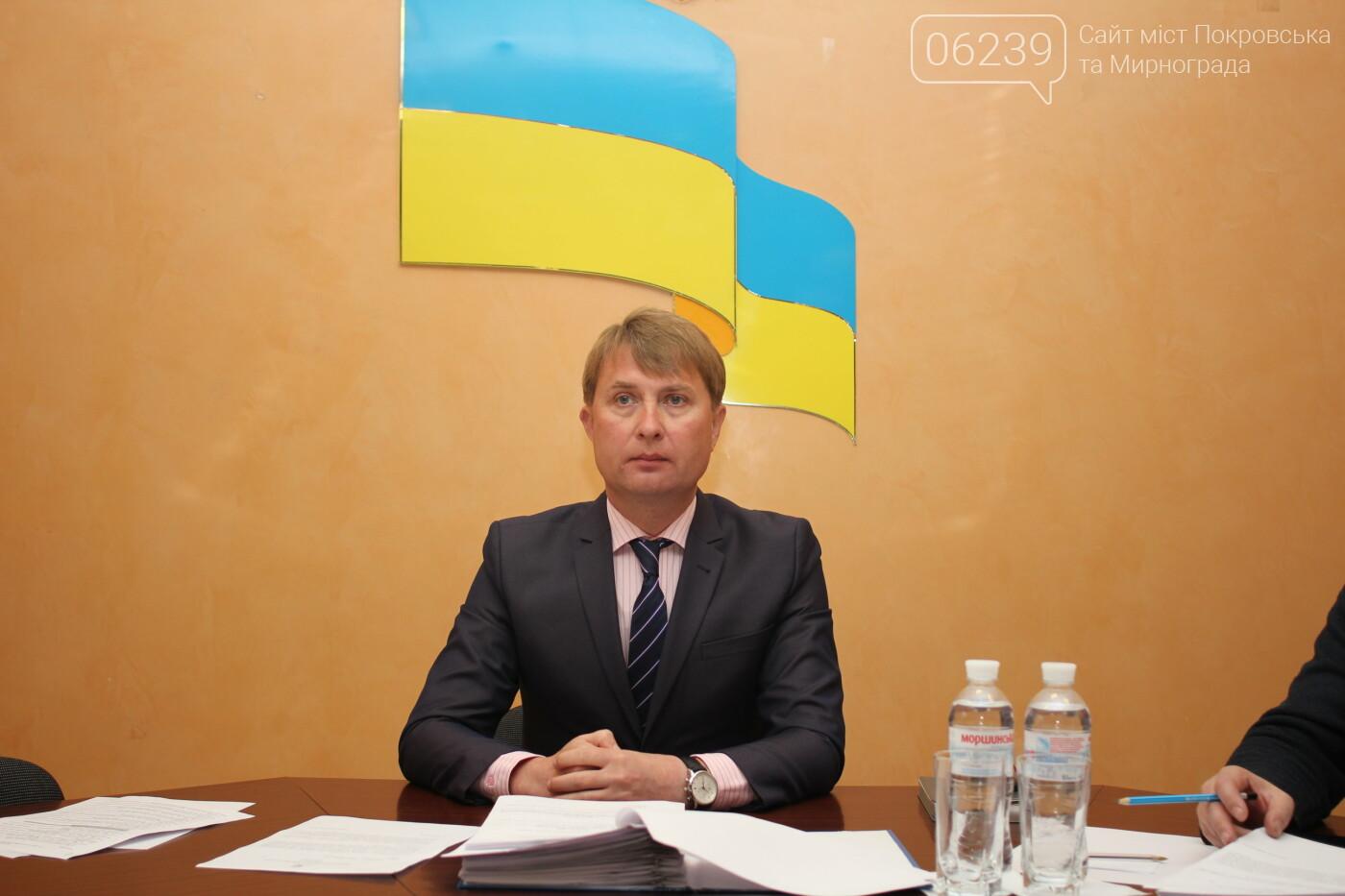 Изменения в бюджете и новый начальник отдела здравоохранения: в Мирнограде состоялась 72-я сессия горсовета, фото-4