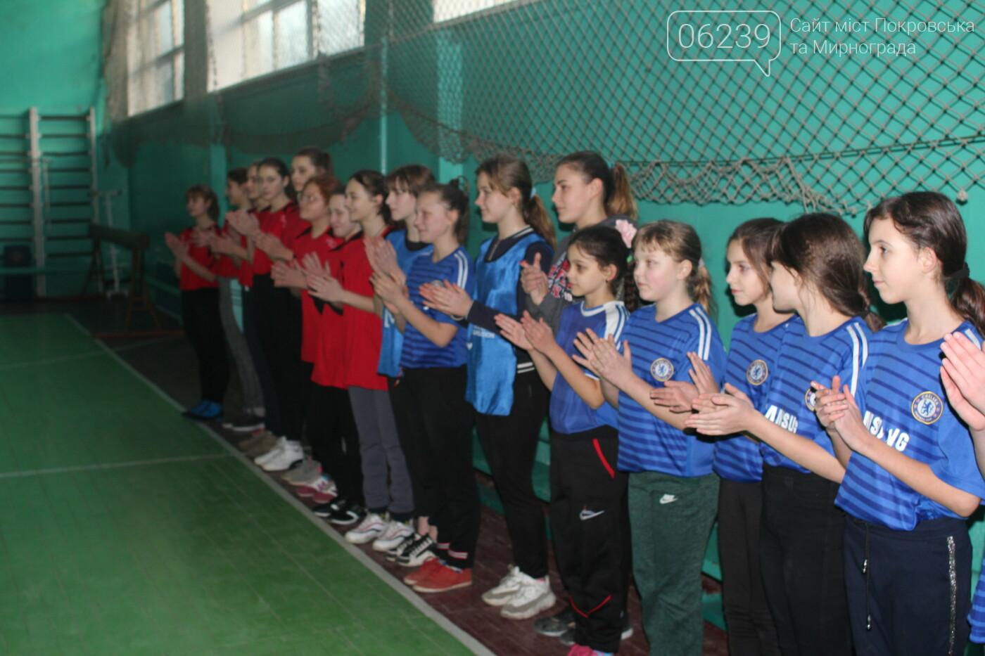 Секции Мирноградской ДЮСШ получили новый инвентарь , фото-1