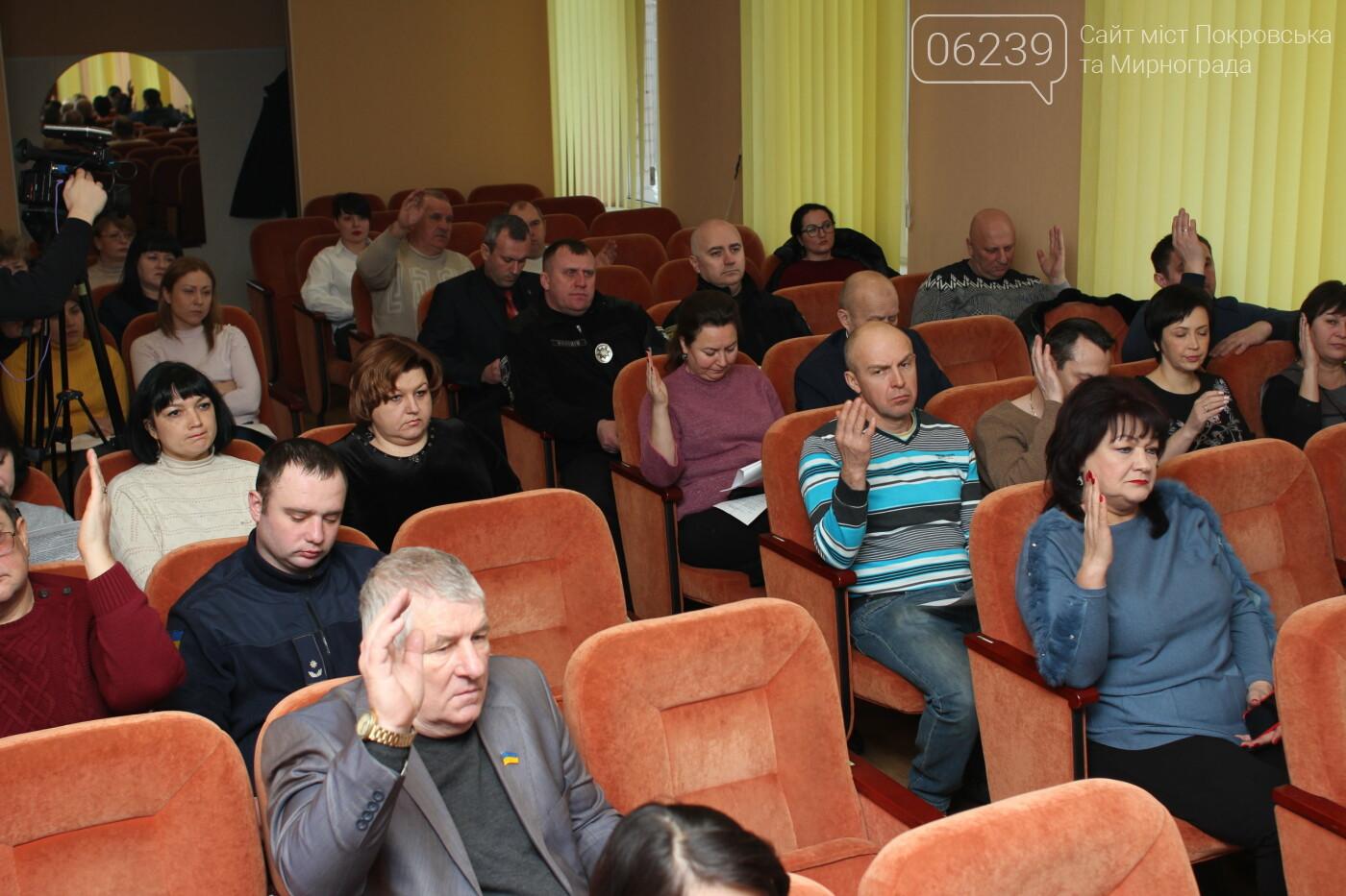 Изменения в бюджете и новый начальник отдела полиции: в Мирнограде состоялась 73-я сессия горсовета, фото-2