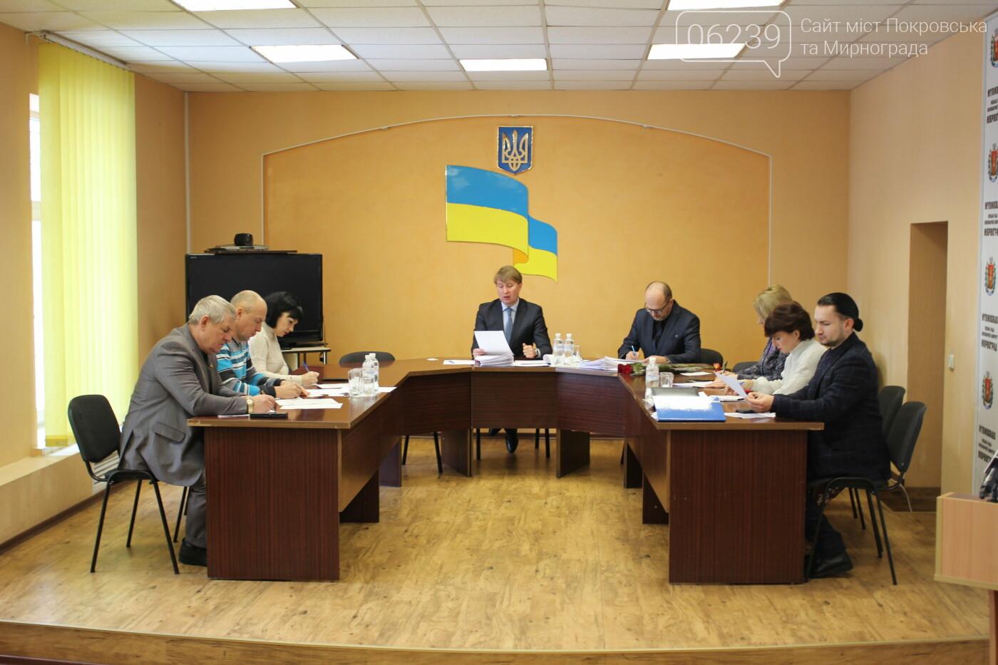 Изменения в бюджете и новый начальник отдела полиции: в Мирнограде состоялась 73-я сессия горсовета, фото-3