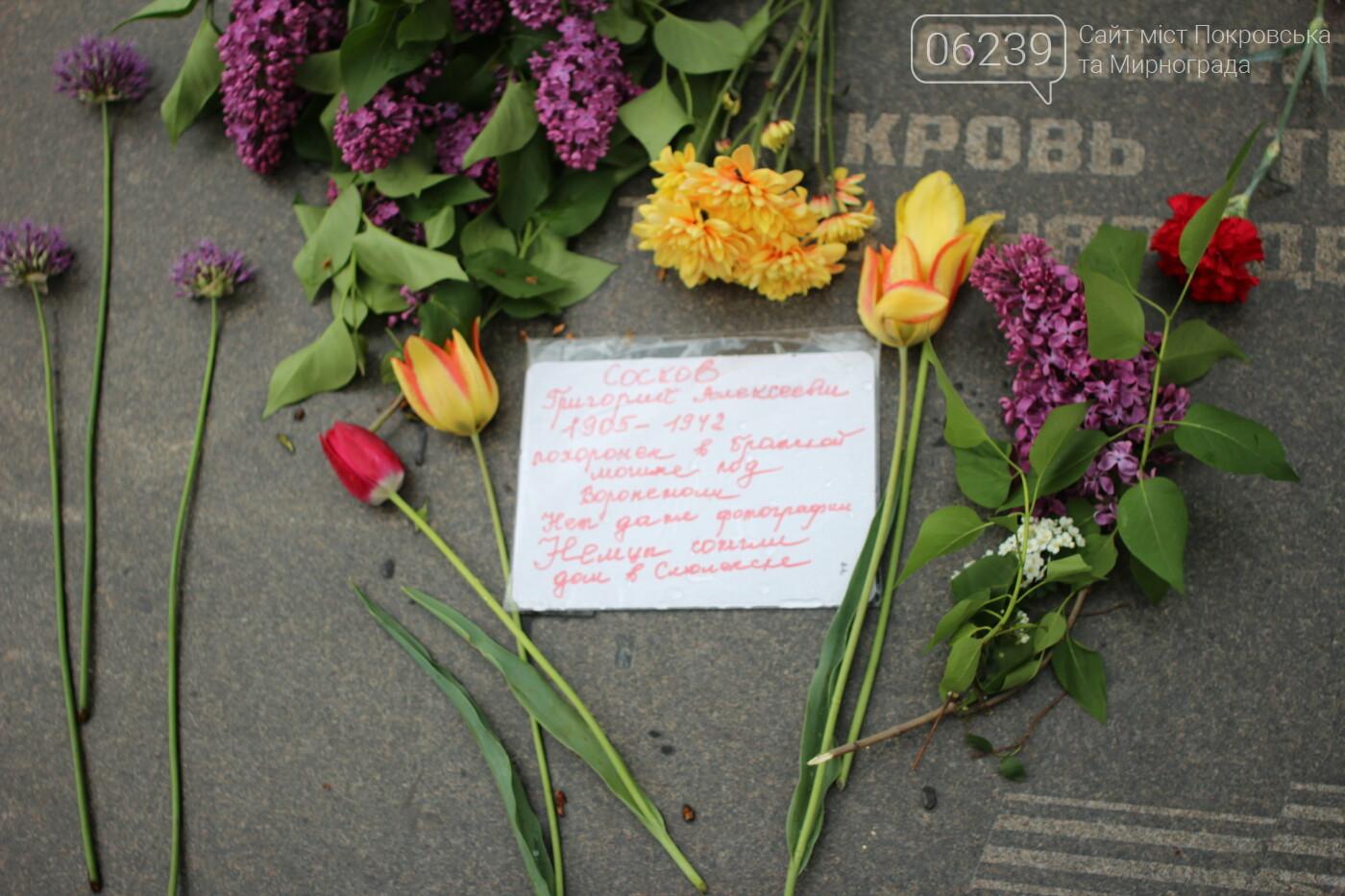 В Мирнограде отметили День победы над нацизмом, фото-2