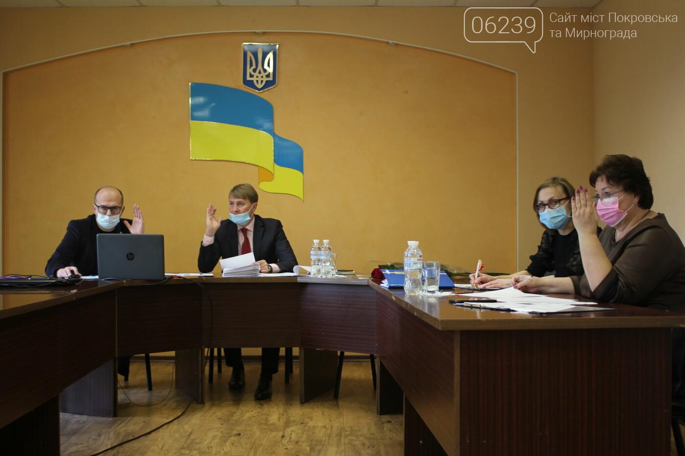 В Мирнограде сессия горсовета снова проходила в онлайн-режиме (вопросы повестки дня), фото-6