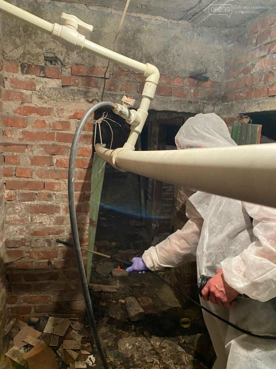 В подвалах жилых домов Покровска проводится дезинсекция и дератизация (ФОТО), фото-1