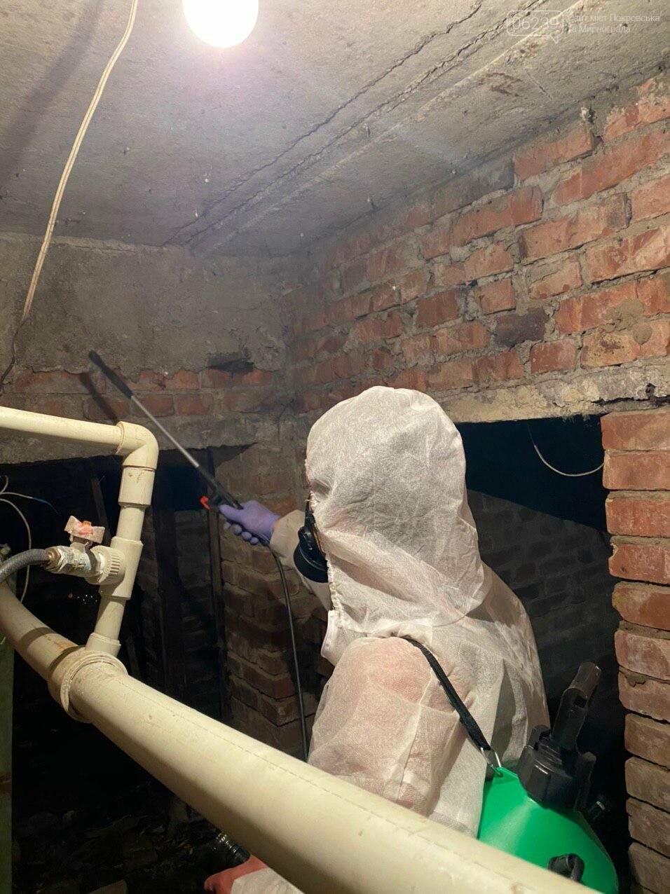 В подвалах жилых домов Покровска проводится дезинсекция и дератизация (ФОТО), фото-2