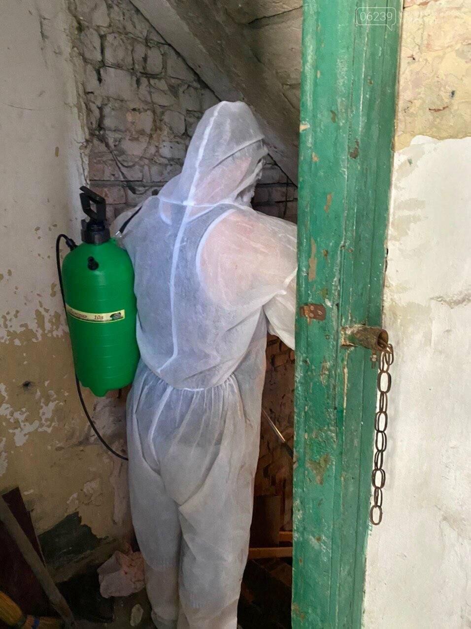 В подвалах жилых домов Покровска проводится дезинсекция и дератизация (ФОТО), фото-3