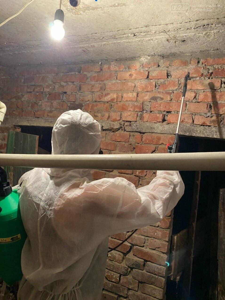 В подвалах жилых домов Покровска проводится дезинсекция и дератизация (ФОТО), фото-5