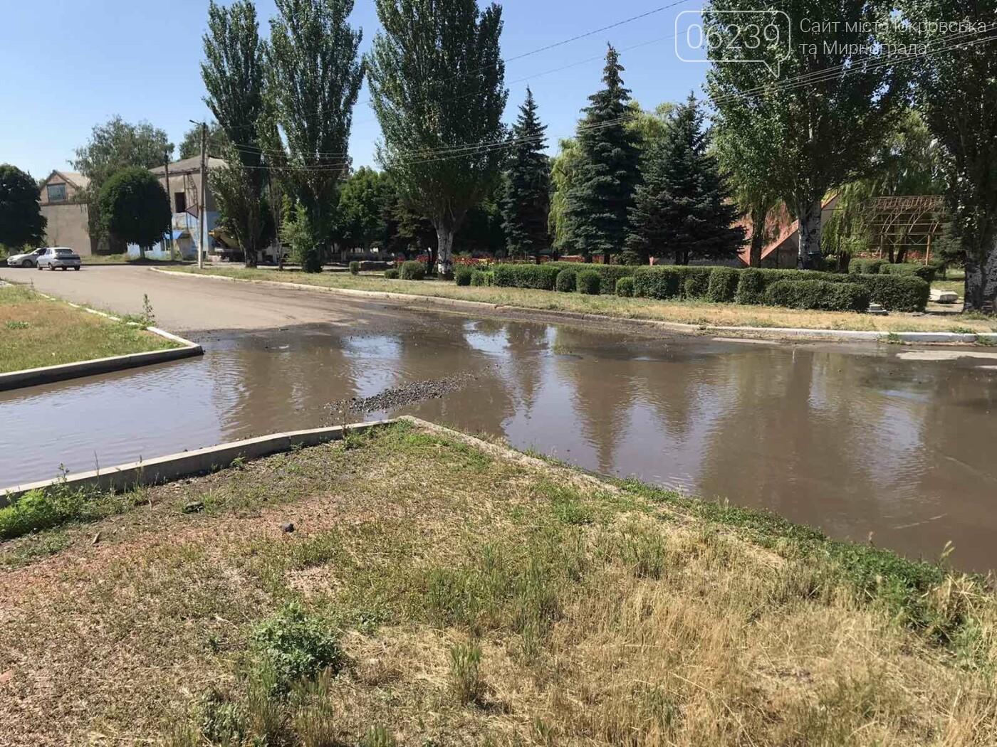 В центре Мирнограда устраняют масштабный порыв воды , фото-1