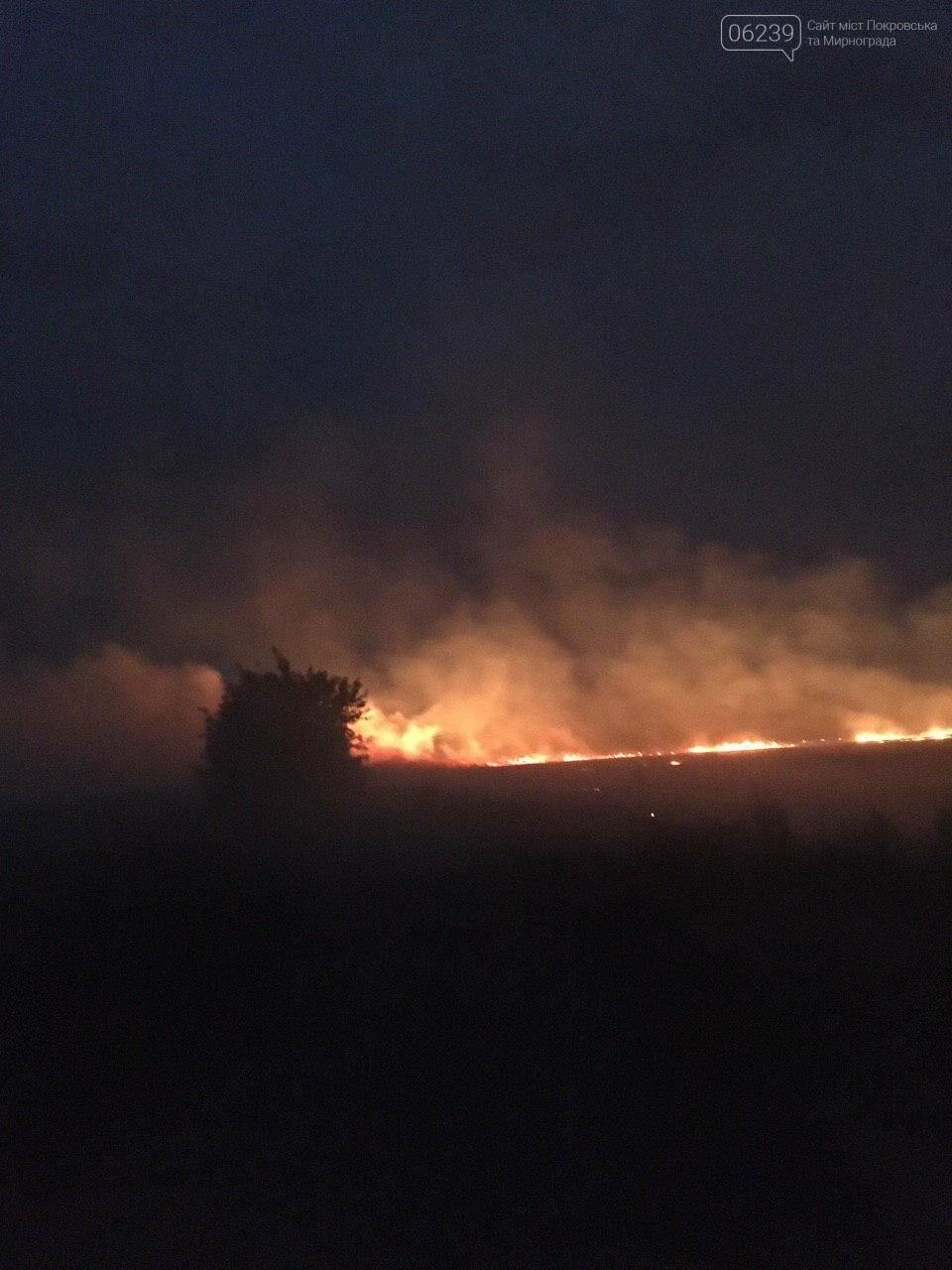 Огненная стихия не обошла стороной поля возле Мирнограда , фото-2