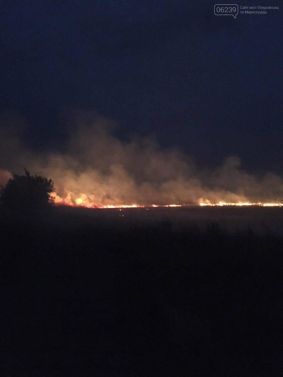 Огненная стихия не обошла стороной поля возле Мирнограда , фото-1