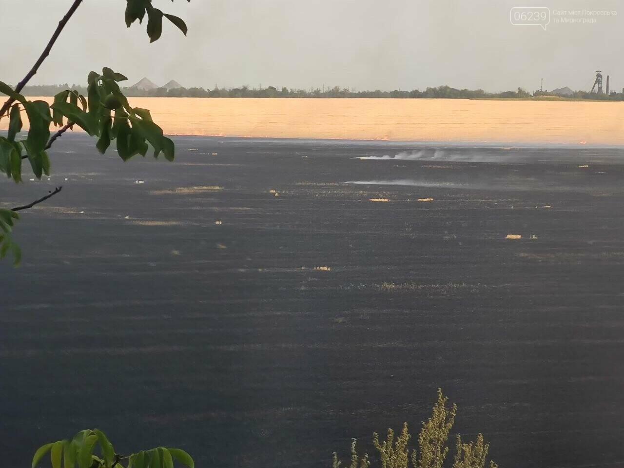 Этой ночью в Мирнограде горело поле, зарево огня видели во всех районах города , фото-2