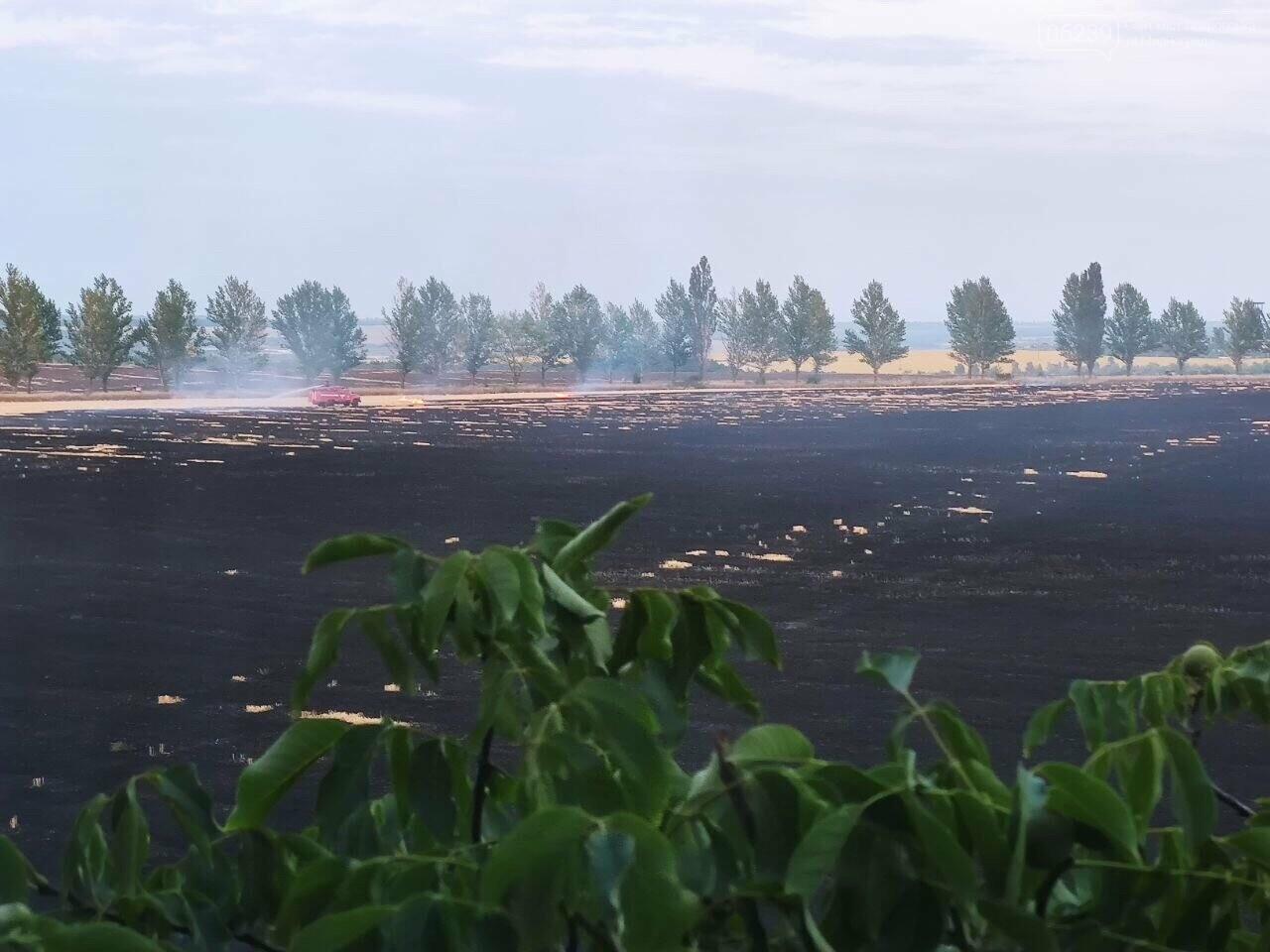 Этой ночью в Мирнограде горело поле, зарево огня видели во всех районах города , фото-1