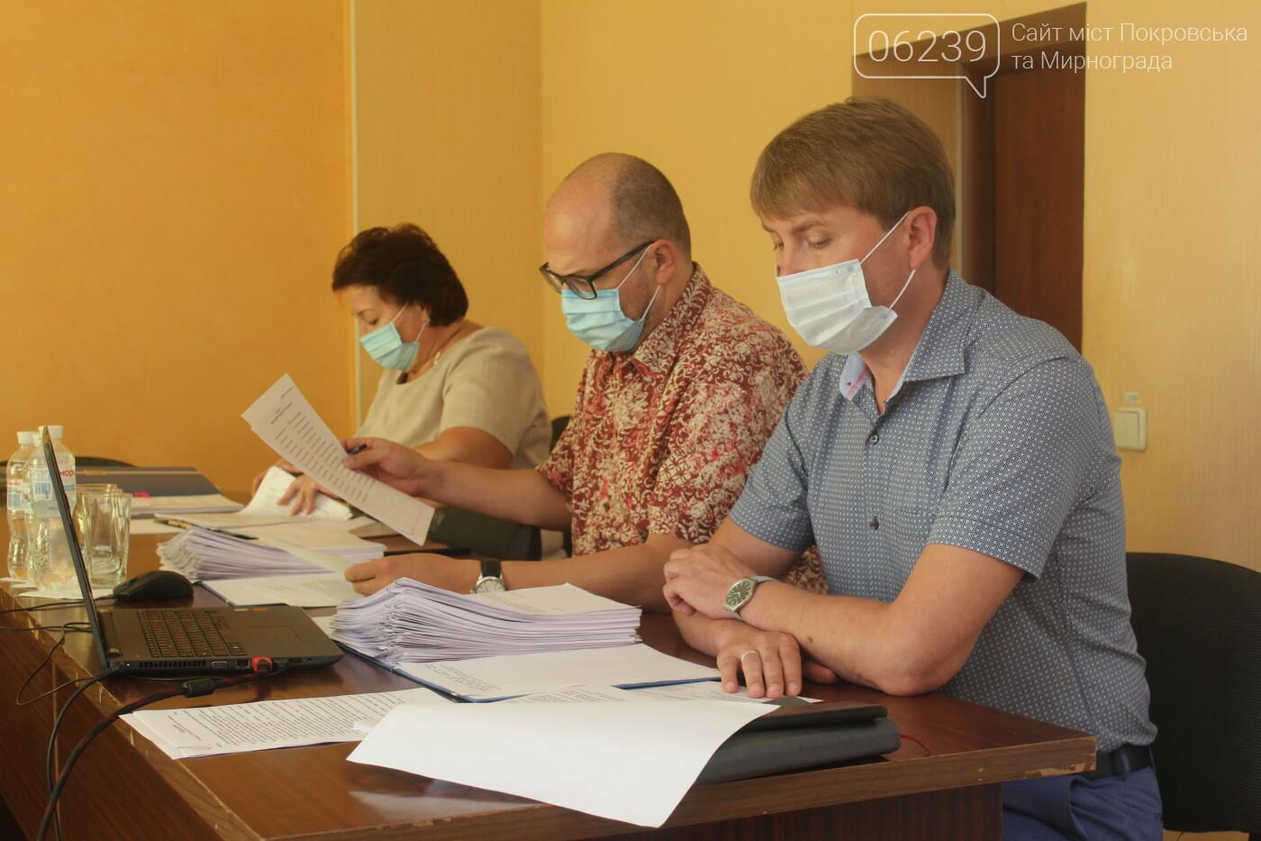 Текущие вопросы и ход выполнения нескольких городских программ: в Мирнограде прошла очередная сессия горсовета, фото-6