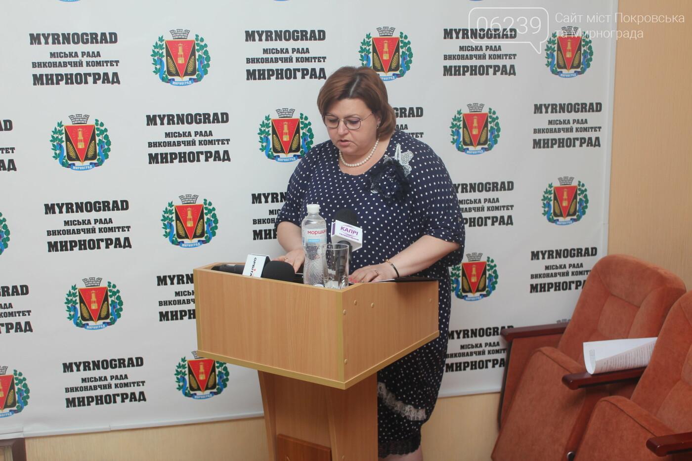 Текущие вопросы и ход выполнения нескольких городских программ: в Мирнограде прошла очередная сессия горсовета, фото-8