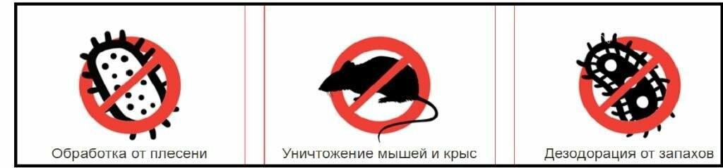 В Покровске начала работать компания по дезинсекции «Дезконтроль» , фото-2