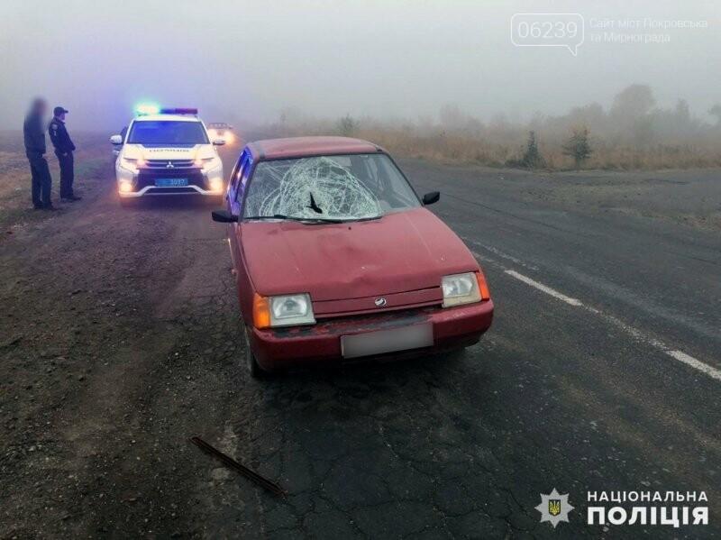 В Покровском районе под колеса автомобиля попала 36-летняя женщина, фото-1