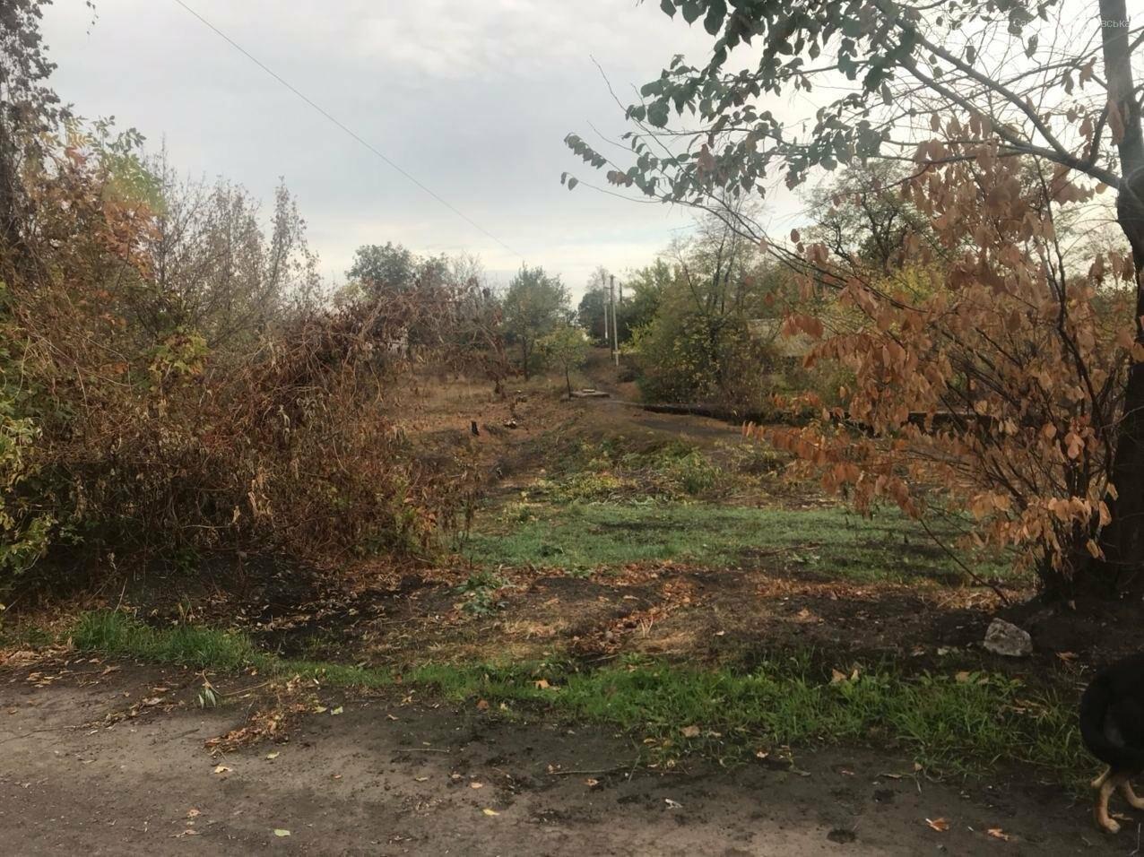 В Мирнограде комммунальщики взялись за очистку от мусора и кустарников пешеходной балки , фото-2