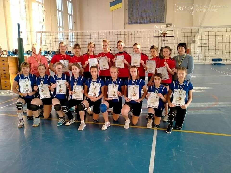 Волейболисти Покровська показали гарний результат на Чемпіонаті області, фото-1