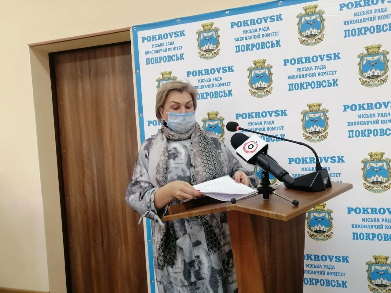 В Покровске прошло последнее заседание исполнительного комитета , фото-6