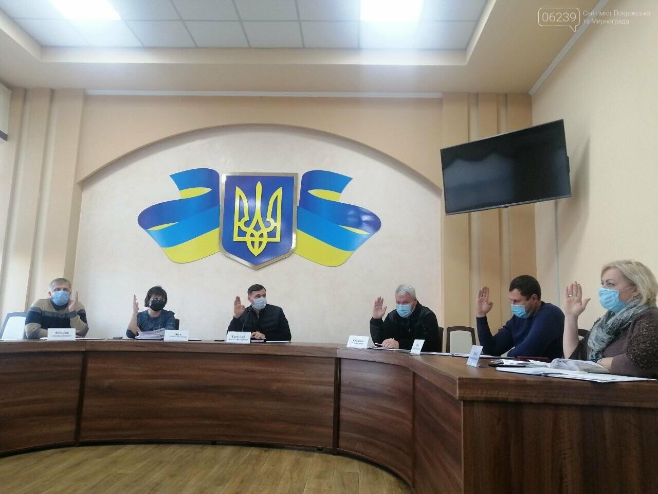 В Покровске прошло последнее заседание исполнительного комитета , фото-1