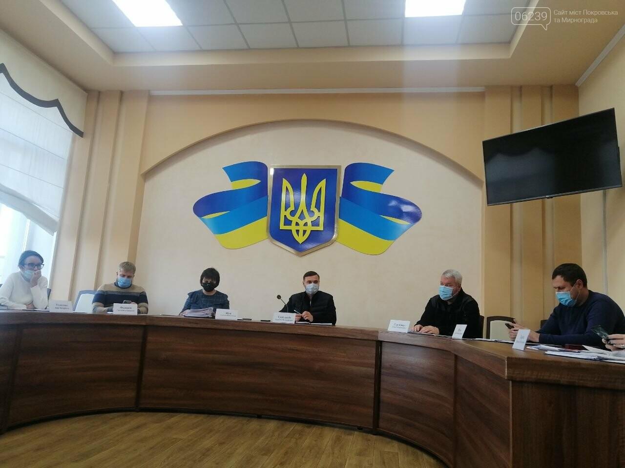 В Покровске прошло последнее заседание исполнительного комитета , фото-7