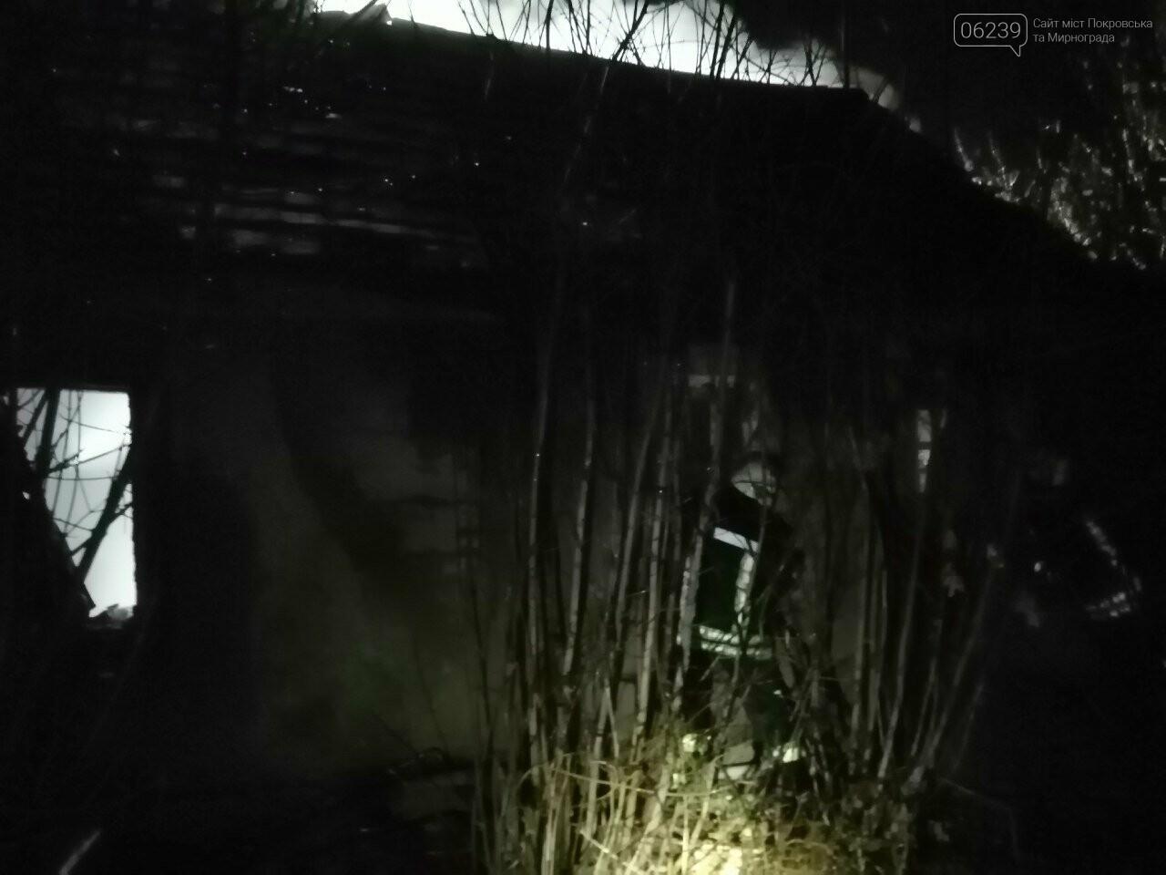 В минувшую пятницу в Покровском районе горел заброшенный дом, фото-1