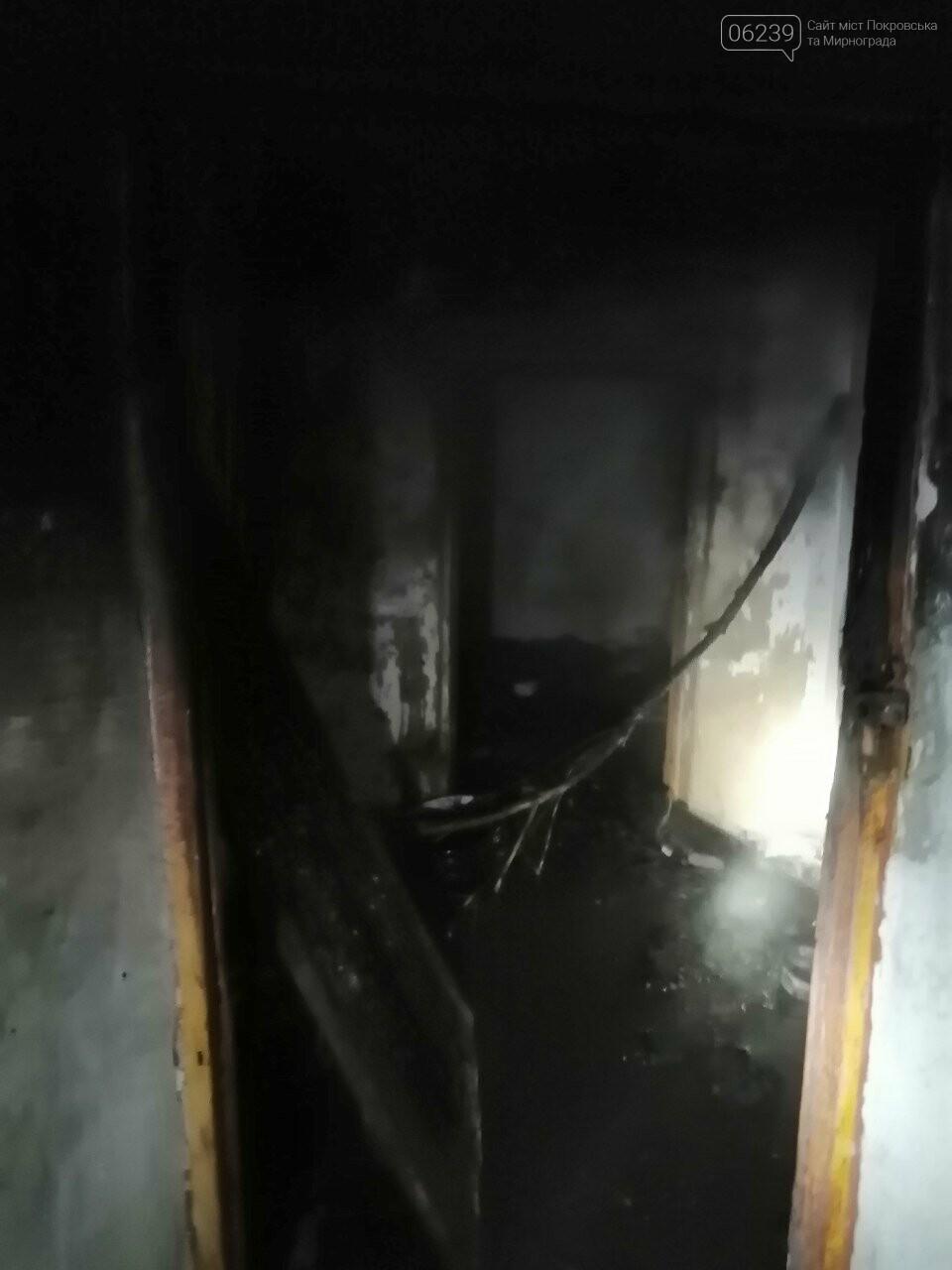 В минувшую пятницу в Покровском районе горел заброшенный дом, фото-2