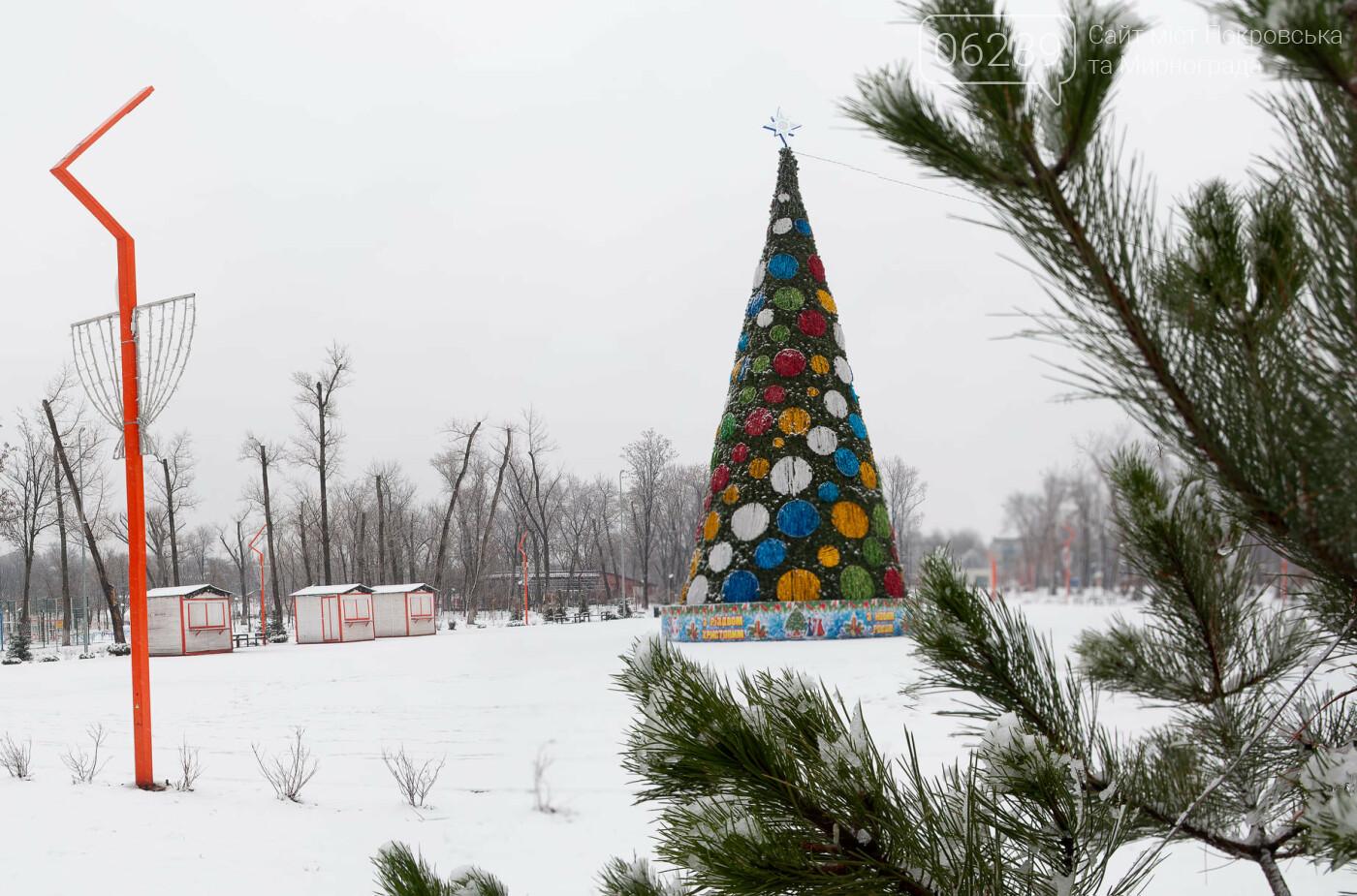 Главная ёлка Покровска взяла выходные, фото-1