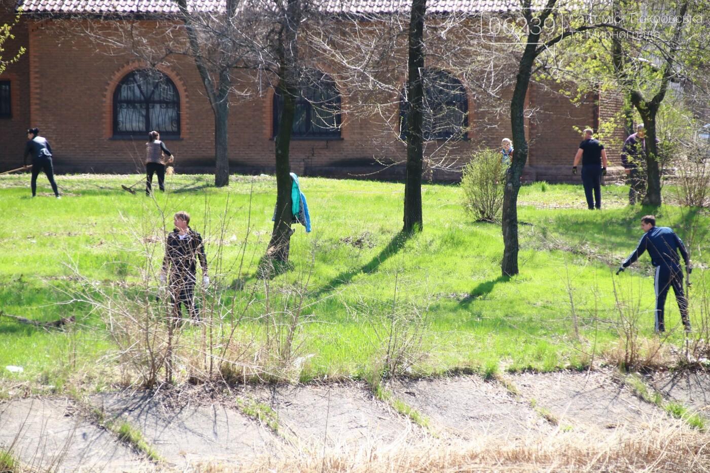 В Мирнограде состоялся общегородской субботник , фото-9