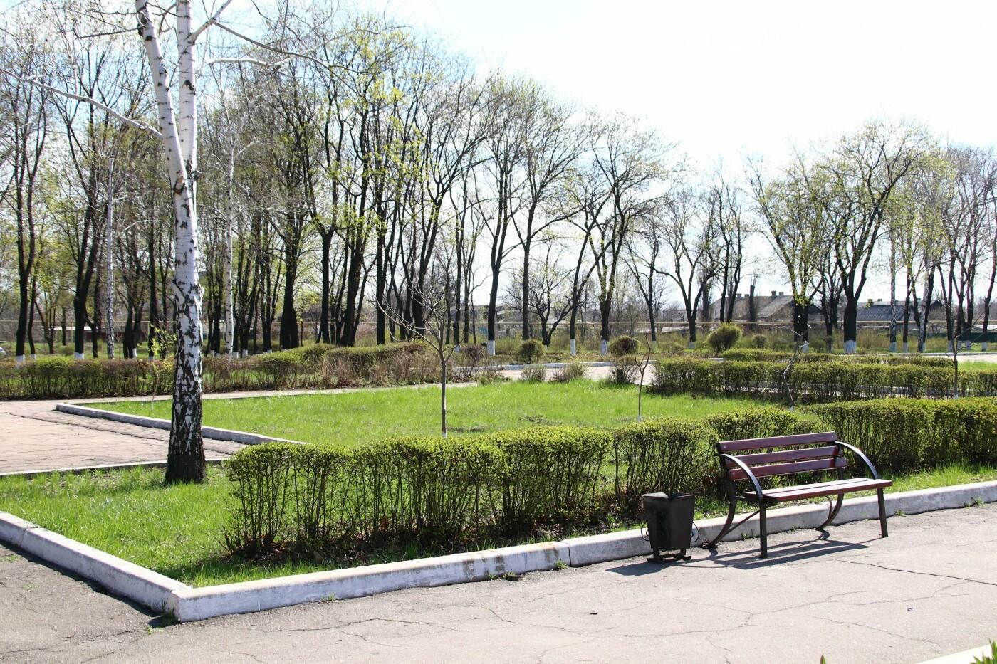 В Мирнограде состоялся общегородской субботник , фото-16