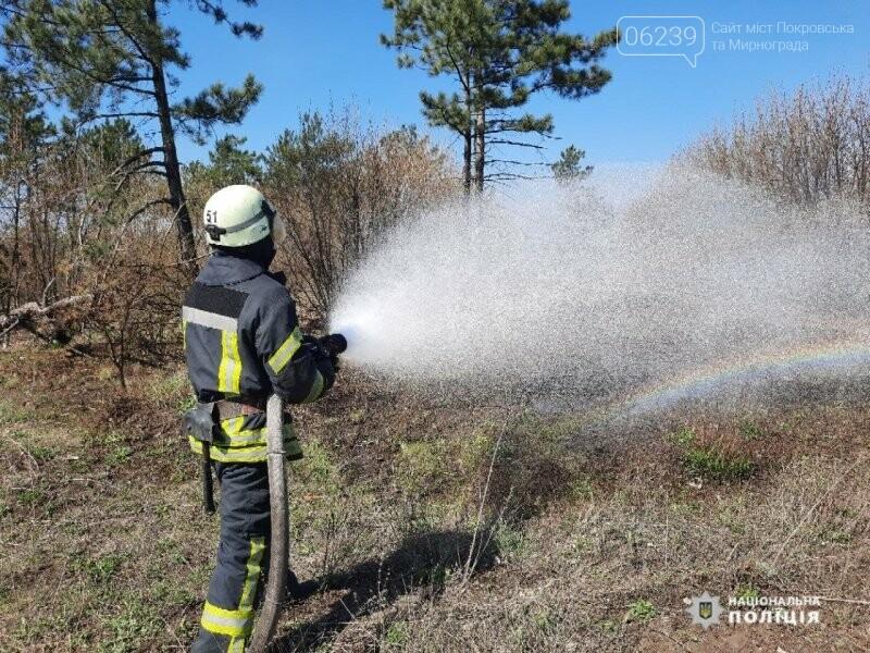 Покровській ОТГ рятувальники та поліцейські відпрацювали спільні дії у разі виникнення надзвичайної ситуації, фото-5