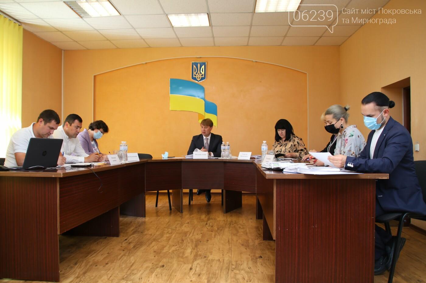 Вопросы благоустройства города и местного бюджета: в Мирнограде состоялась сессия городского совета, фото-6